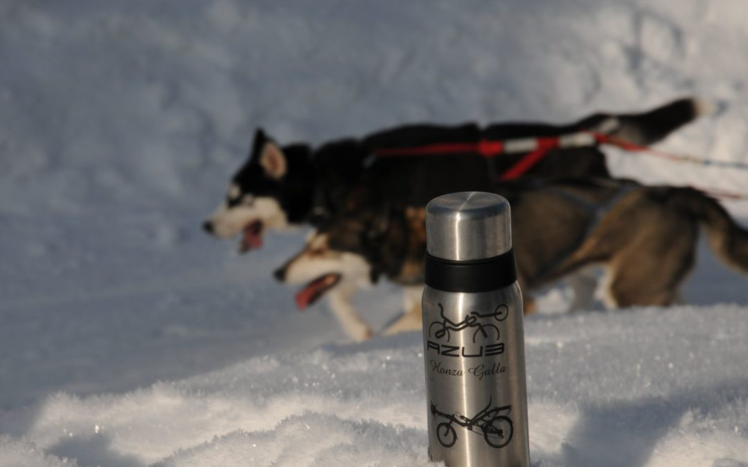 Thermos bottle for AZUB riders