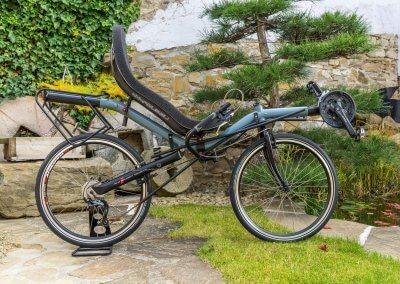 azub-ibex-recumbent-bike-japanese-garden (2)