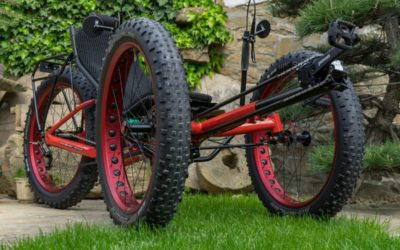 AZUB FAT trike with Pinion gear hub
