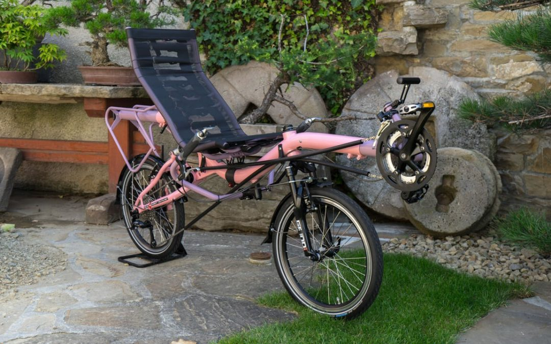 Delicious AZUB Mini for Barbie with trike seat