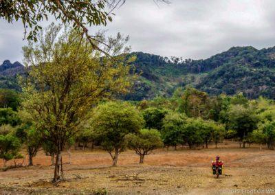 D1049 (24)-FrogsOnWheels-Laos