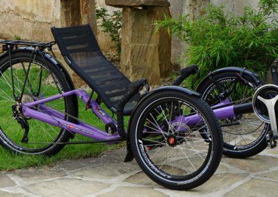 azub_t-tris-26_metrea_purple_001