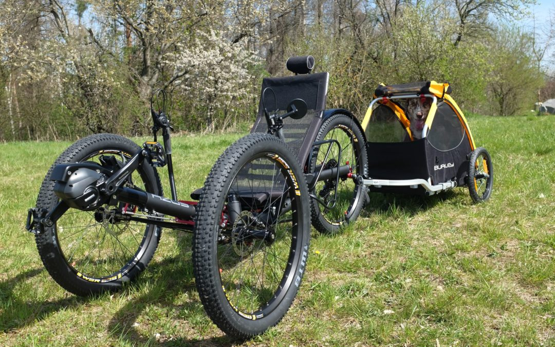 Is the Ti-FLY X the best trike to ride with your dog? For sure is!